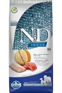 ND Ocean Tahılsız Somon Morina Balığı ve Kavunlu Büyük ve Orta Irk Yetişkin Köpek Maması 12kg
