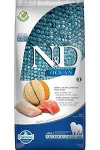 ND Ocean Tahılsız Somon Morina Balığı ve Kavunlu Büyük ve İri Irk Yetişkin Köpek Maması 12kg