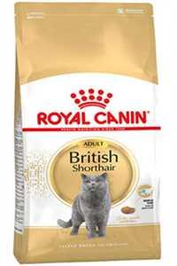 Royal Canin British Shorthair Adult Yetişkin Kedi Maması 10kg