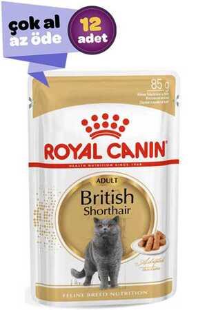 Royal Canin British Shorthair Yetişkin Kedi Konservesi 12x85gr (12li)