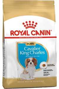 Royal Canin Cavalier King Charles Puppy Yavru Köpek Maması 1,5kg