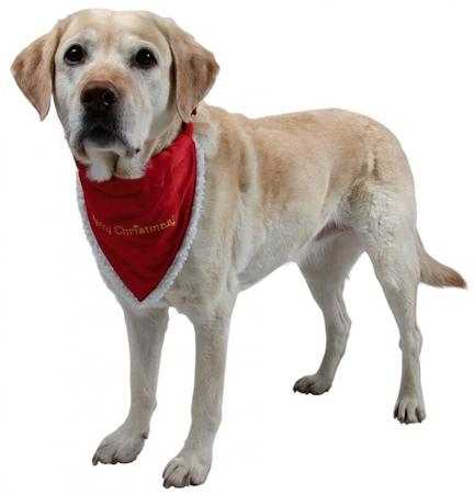 Trixie Köpek Bandanalı Boyun Tasma 37-47cm (M)